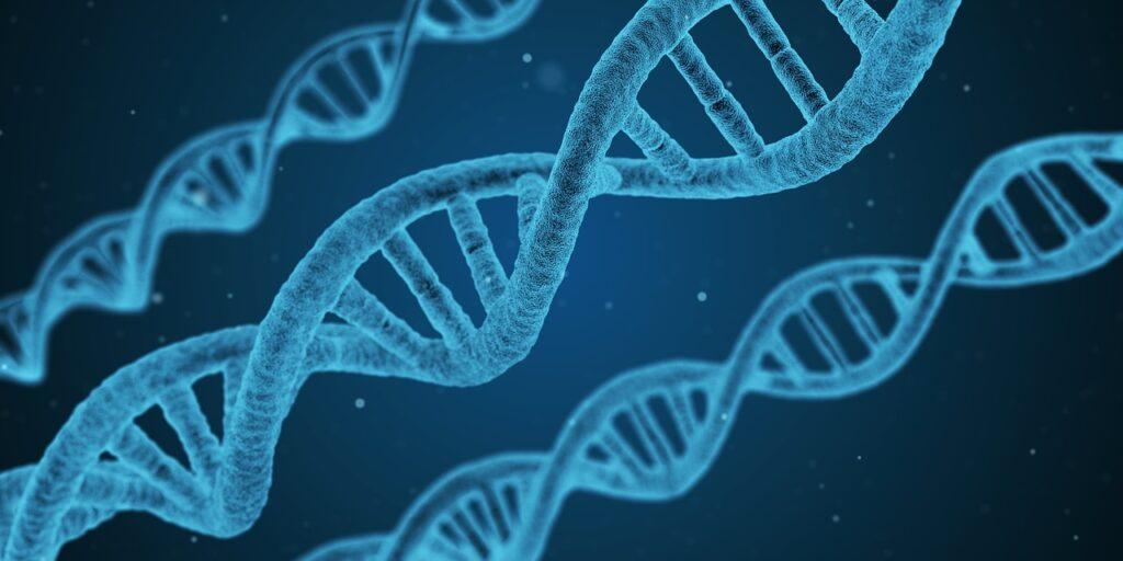 cos'è il biomagnetismo